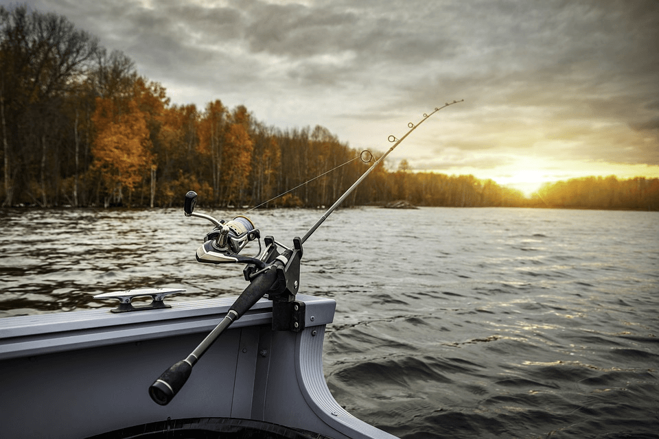 Licença de Pesca - Como funciona? Como conseguir uma?