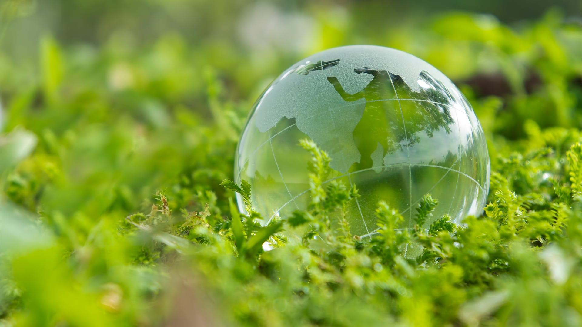 Consultoria Ambiental em Campinas: Tudo que você precisa saber