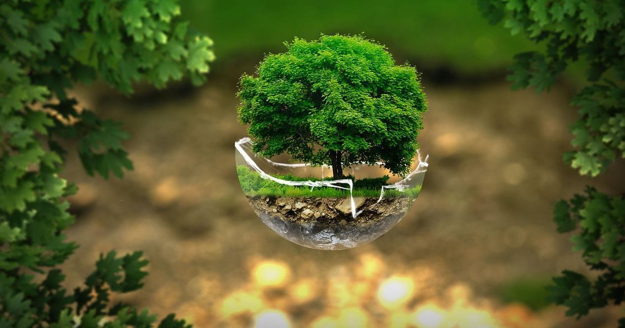 Estudo de Viabilidade Ambiental (EVA) - O que é?