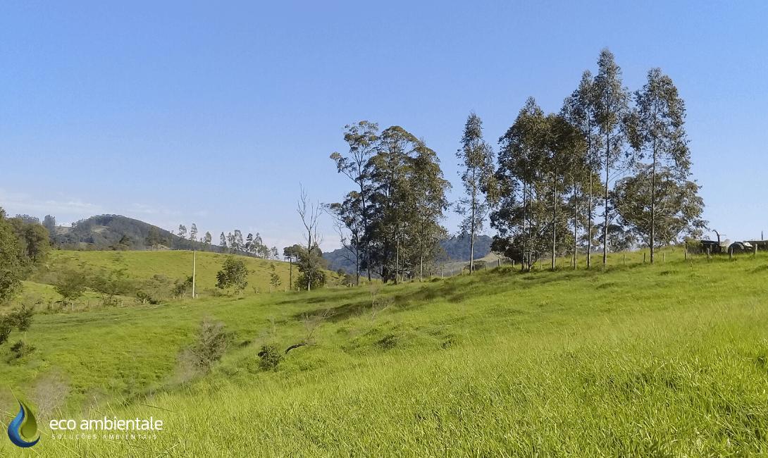 Estudo de Viabilidade Ambiental (EVA) em Propriedade Rural de Amparo