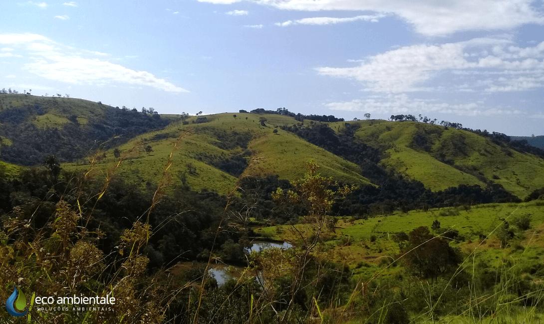 Blog Eco Ambientale -